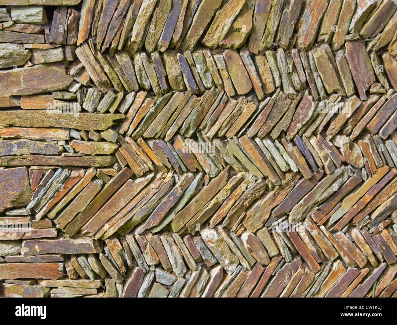 Detail from a traditional dry stone wall in a Devon field - Stock Image