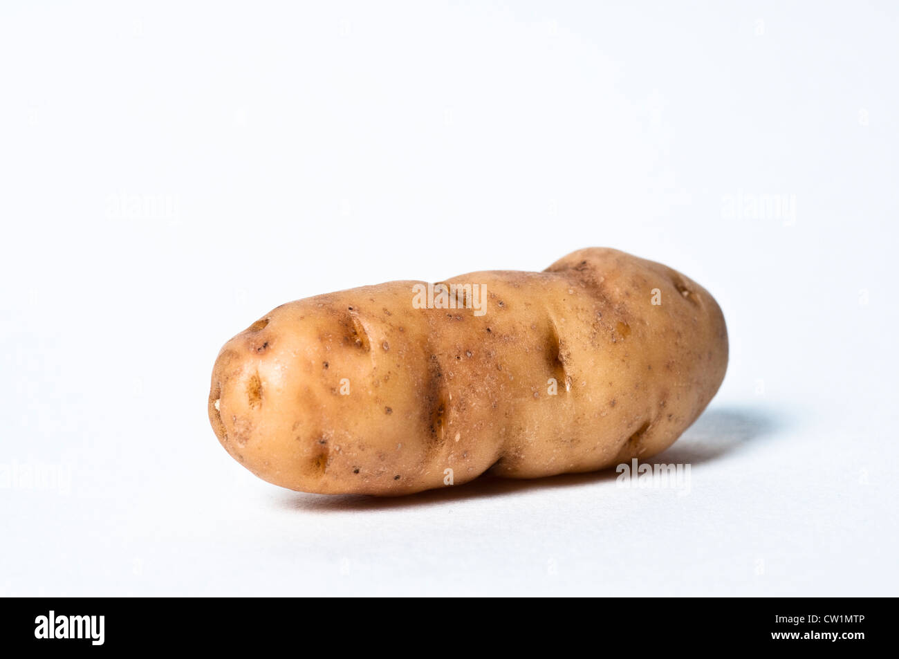 Anya potato - Stock Image
