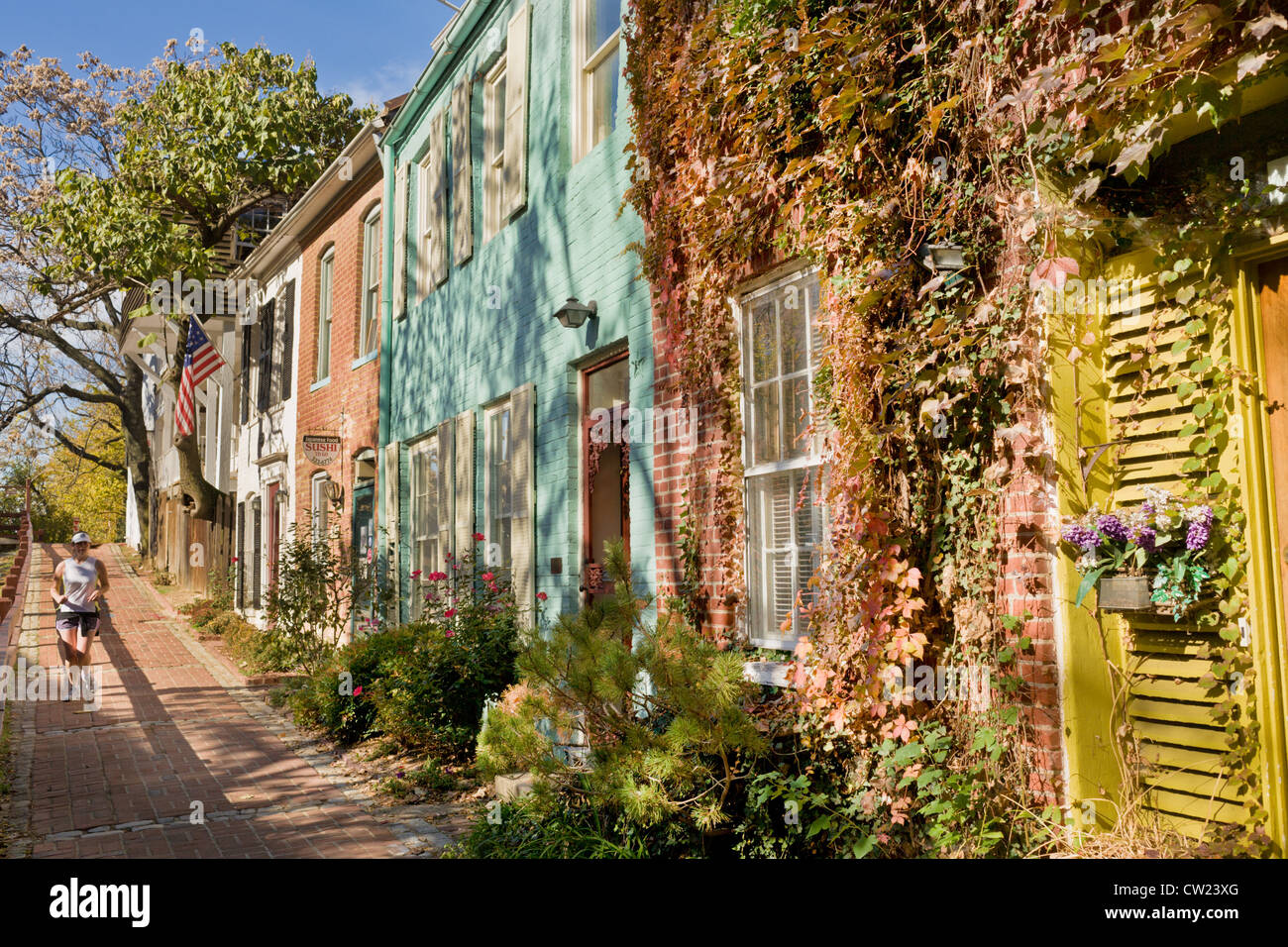Cute homes along C&O Canal in Georgetown, Washington D.C. - Stock Image