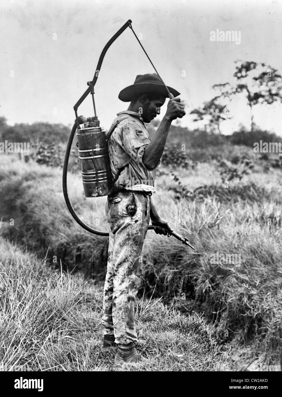 Panama - Spraying oil on breeding places of mosquitoes A man with a cannister of oil on  back spraying liquid onto - Stock Image