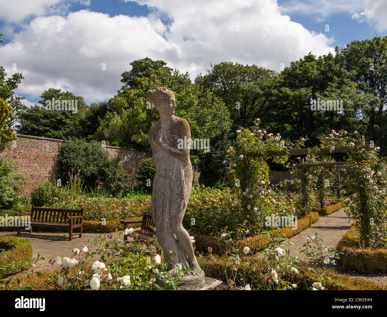 Yorkshire Rose Stock Photos & Yorkshire Rose Stock Images - Alamy