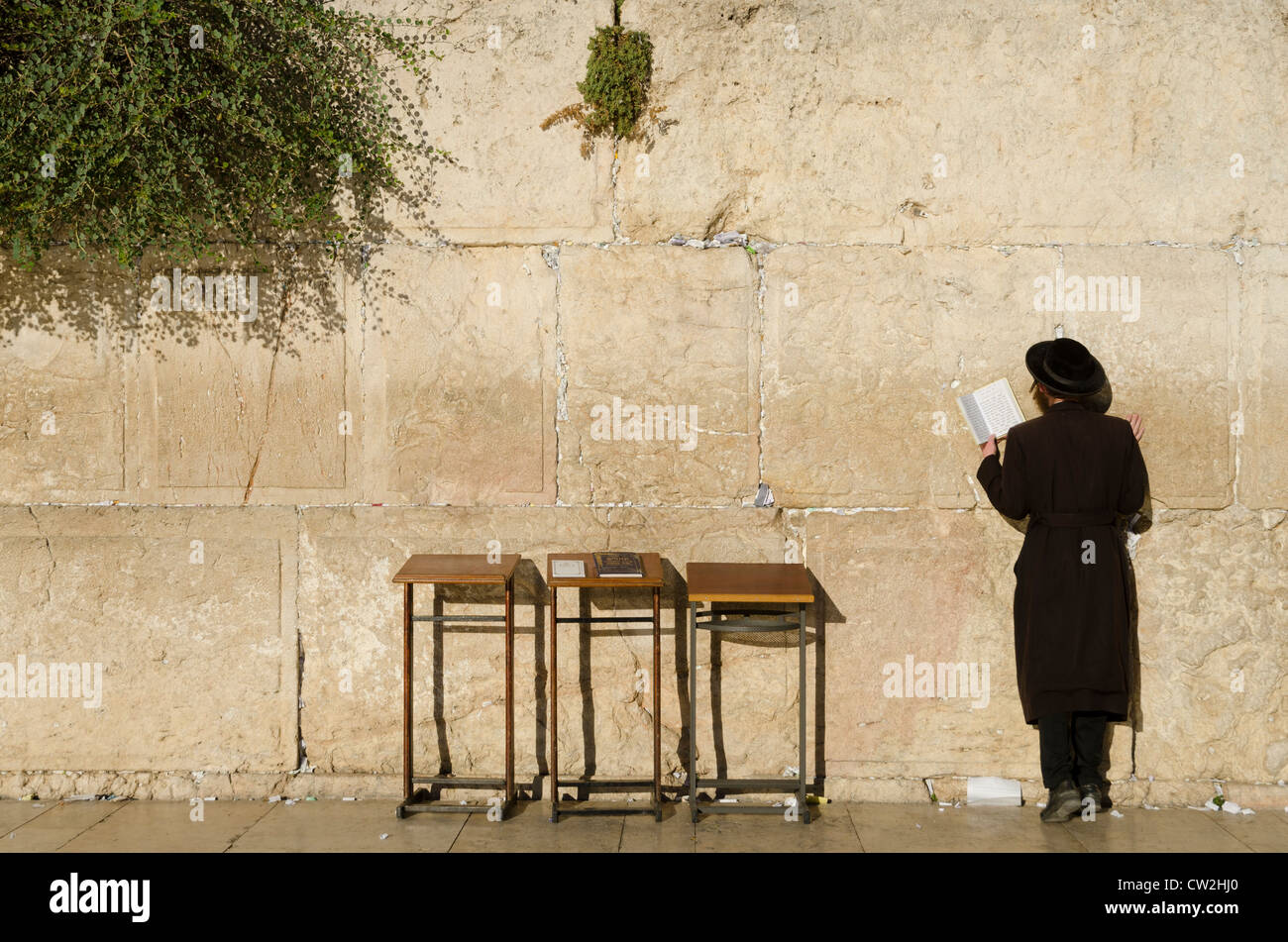 Orthodox Jew praying at the Western Wall. Jerusalem Old City. Israel. - Stock Image