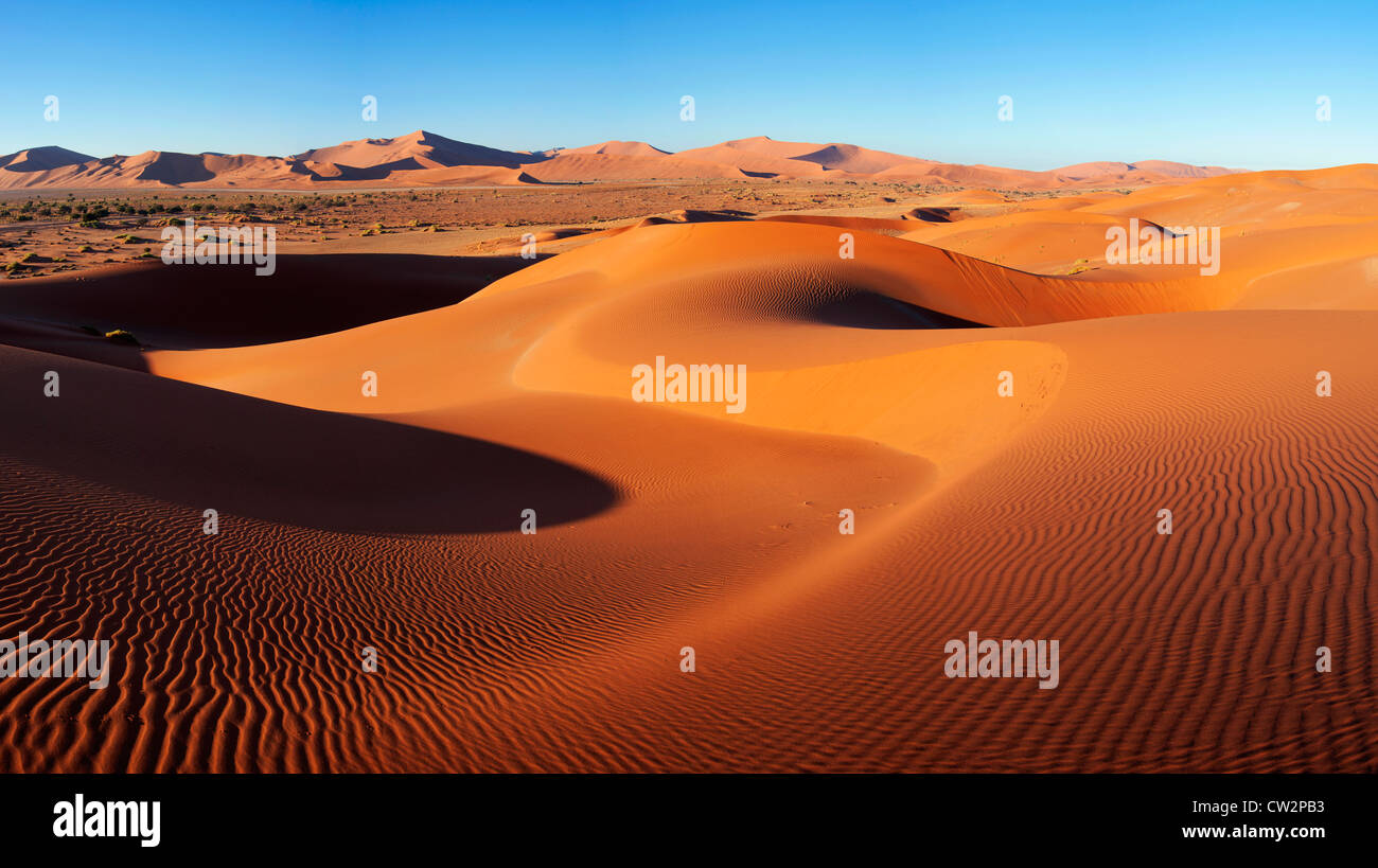 Intricate dune pattern lit up by morning sun. Sossusvlei in the Namib desert. Namib-Naukluft N.P, Namibia - Stock Image