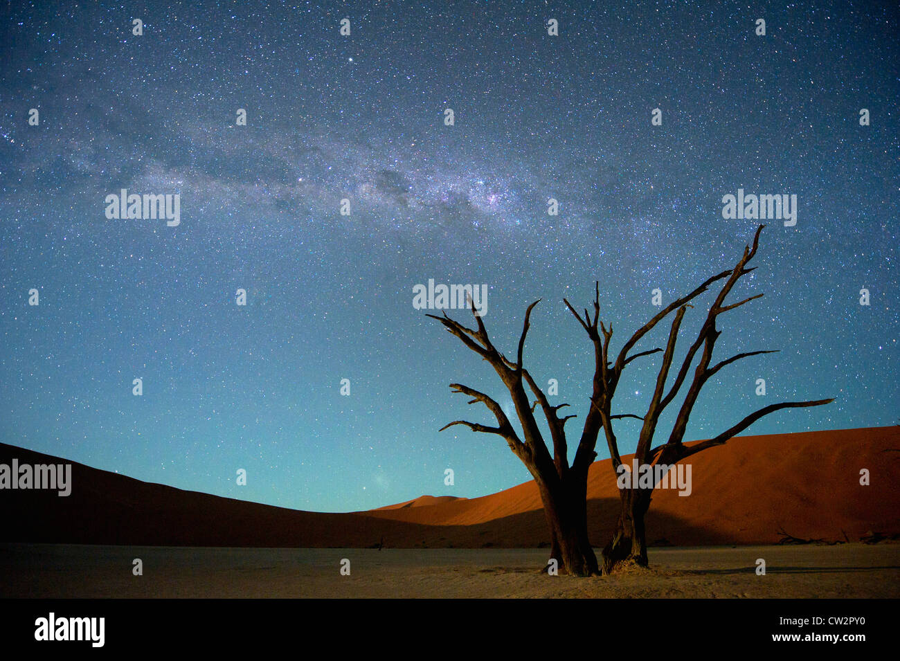 Milky Way over Dead Vlei,Soussvlei,Namibia - Stock Image