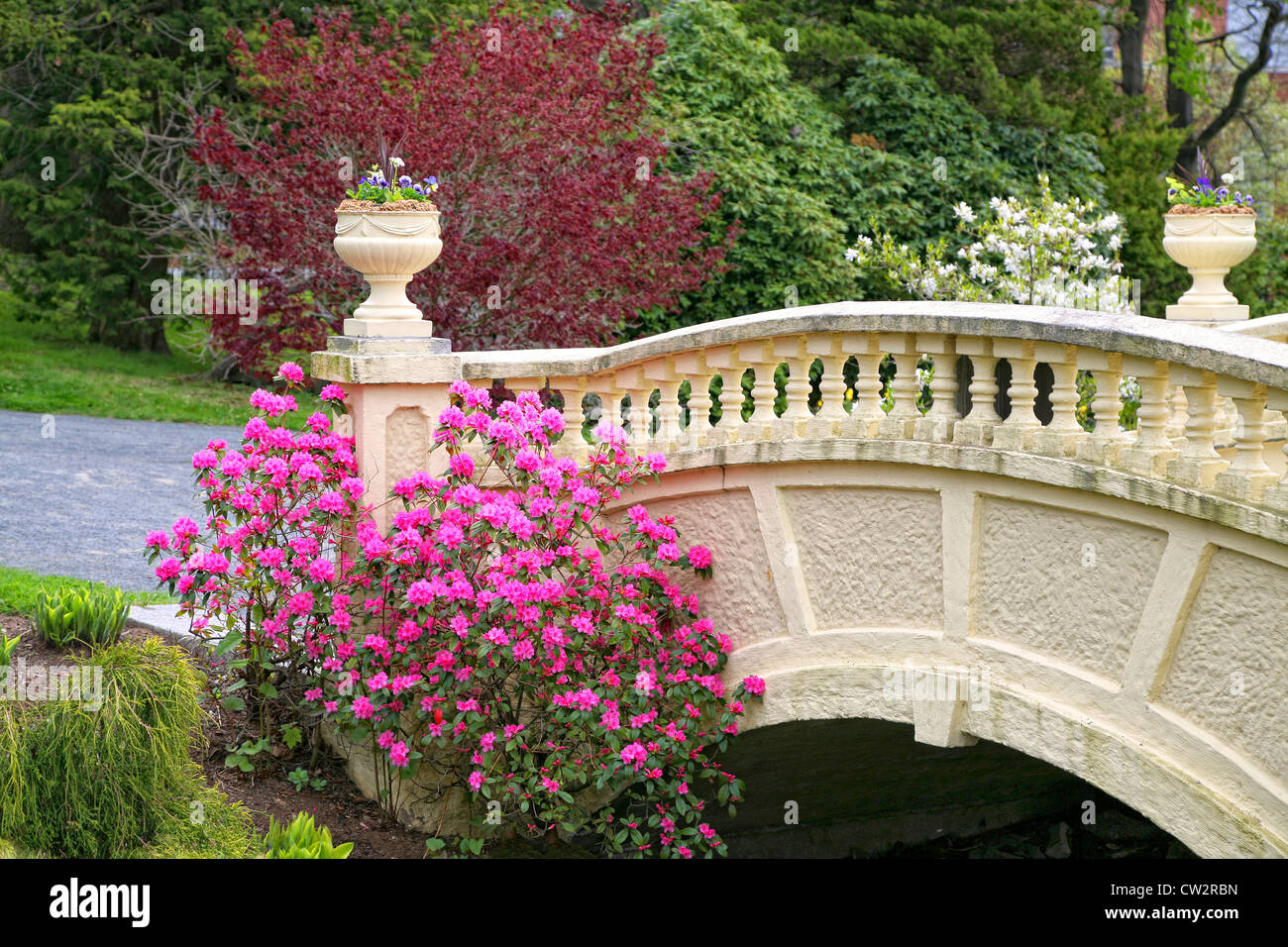 A PJM rhododendron and annual flowers adorn a garden bridge in a springtime park. - Stock Image
