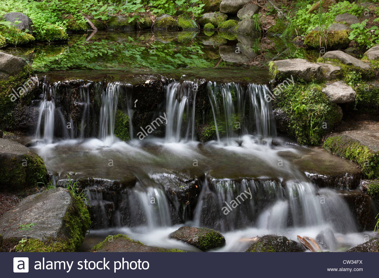 Water cascades from Fern Spring, a natural spring in the main valley of Yosemite National Park, California. Stock Photo