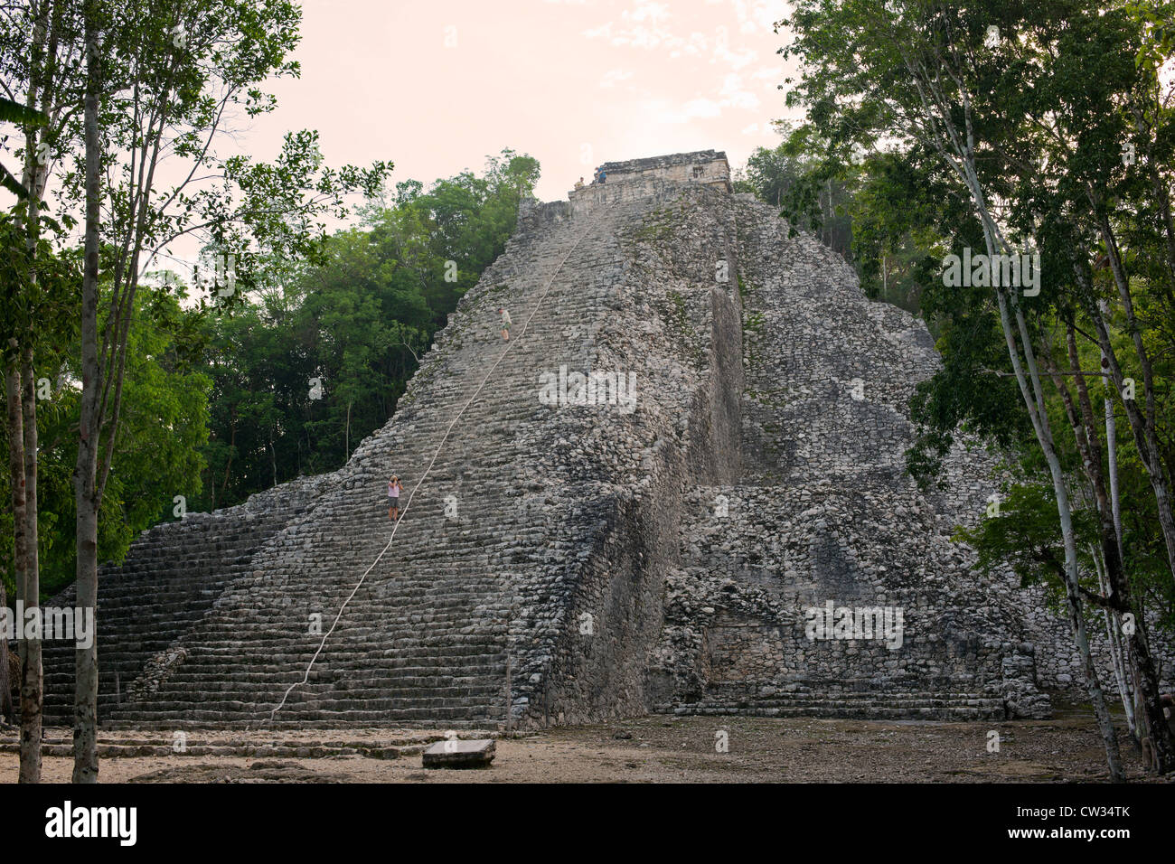 Mexico,Quintana Roo,Coba,Nohoch Mul also known as the Great Pyramid - Stock Image