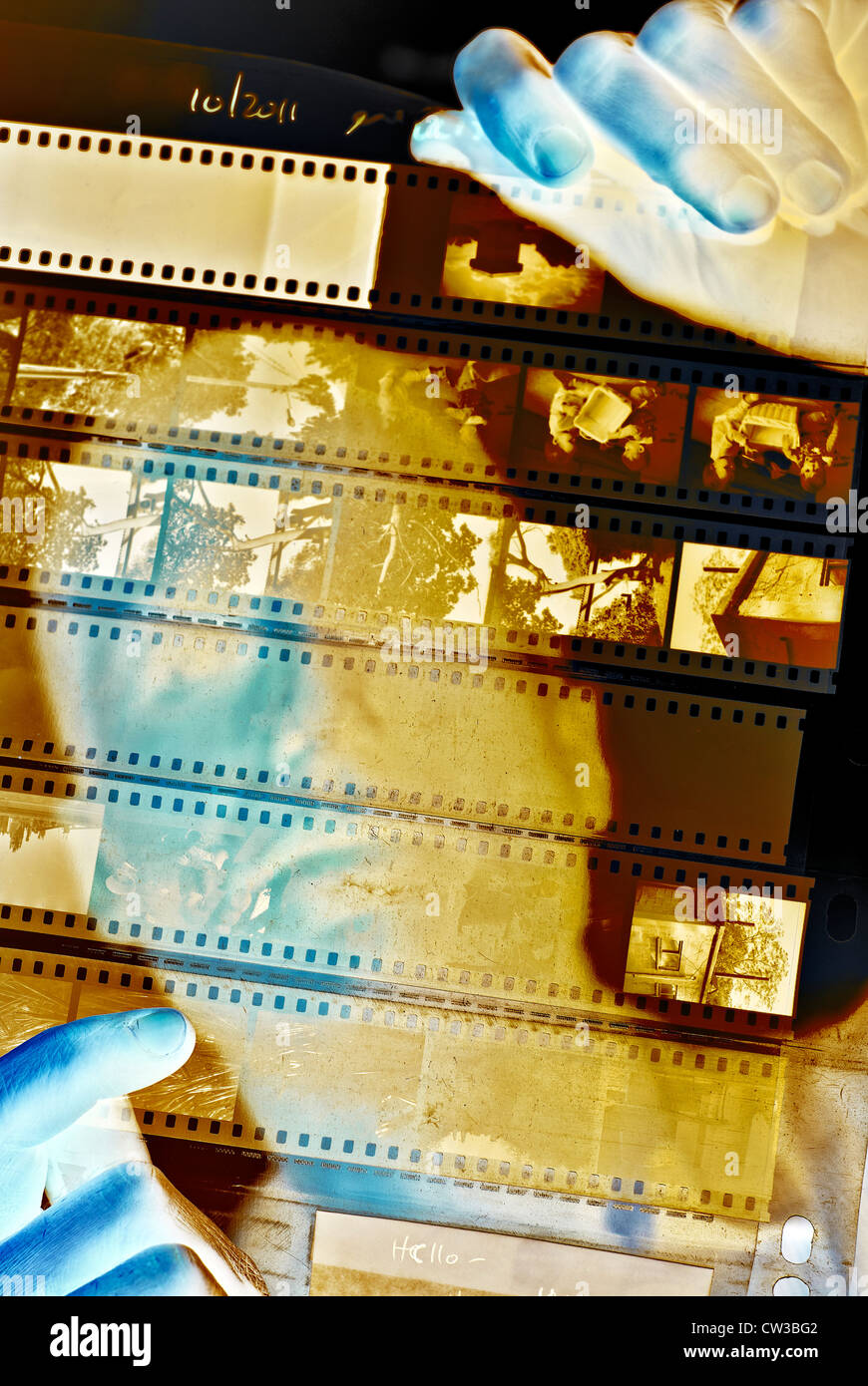 Photographer looks at a sheet of negatives - digitally manipulated image Stock Photo