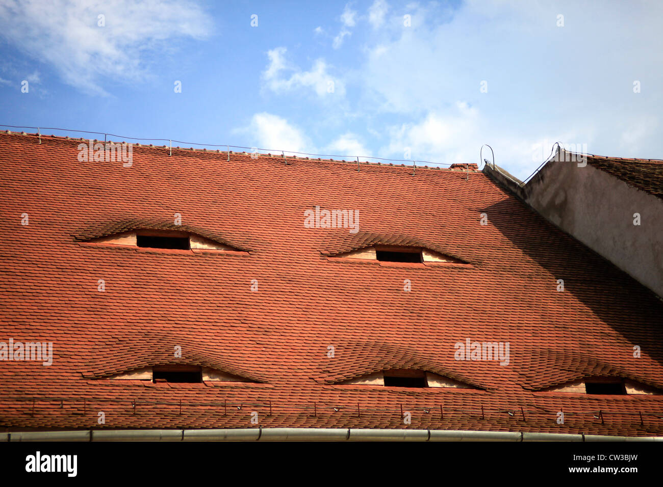 Sibiu, Romania. Traditional roof - Stock Image