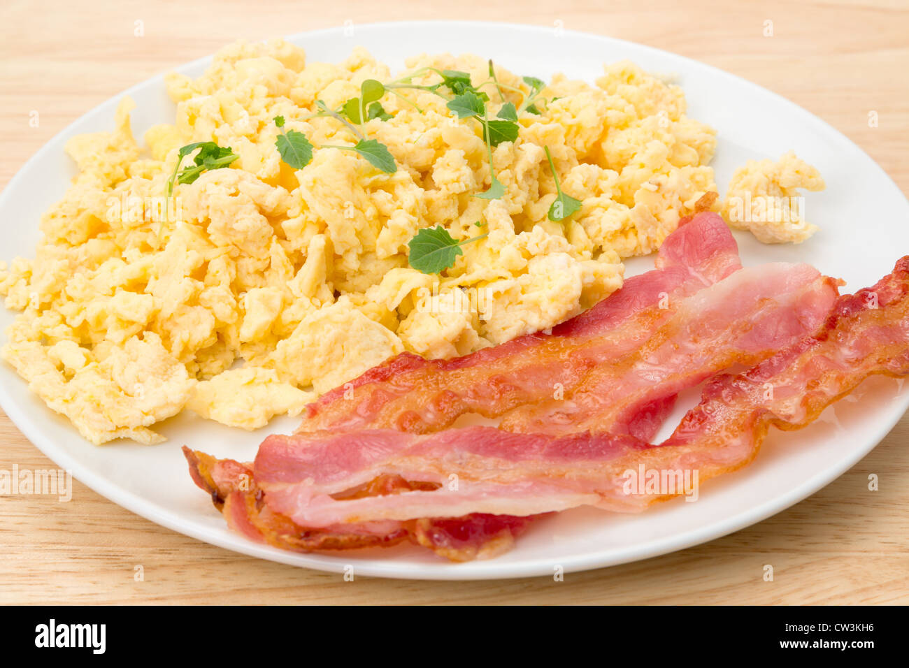 Scrambled eggs with streaky bacon breakfast - studio shot - Stock Image