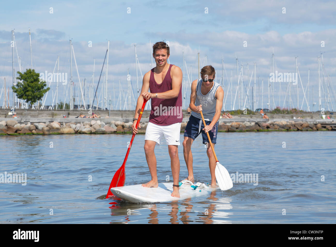 Two teenagers having fun stand up paddling on a windsurf board on a sunny summer day at the beach at Rungsted Harbour, - Stock Image
