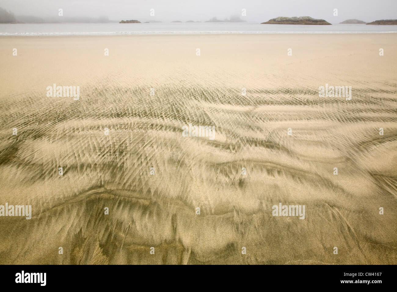 Rippled pattern in sand on the beach, Inside Passage, Sandy Beach, British Columbia, Canada - Stock Image