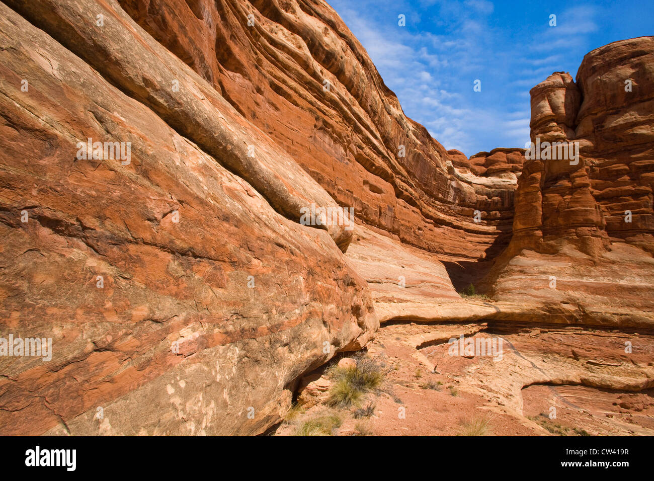 Rock formations on a landscape, Canyonlands National Park, Utah, USA - Stock Image
