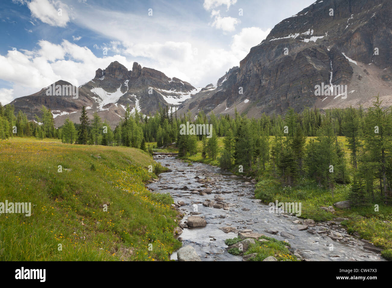 Canada, Mount Assiniboine Provincial Park, Gog Lake meadows, The Towers and Naiset Point, Gog lake outlet Stock Photo
