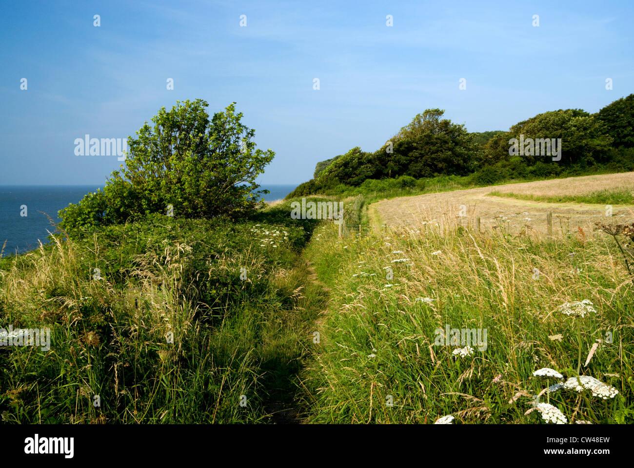 all wales coastal path, st donats, llantwit major, glamorgan heritage coast, vale of glamorgan, wales. - Stock Image