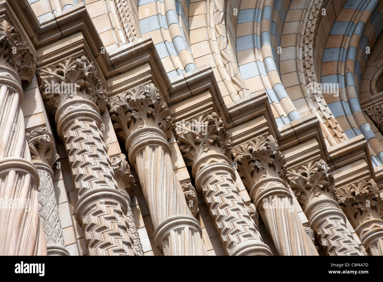 Detail of the Natural History Museum, London - Stock Image