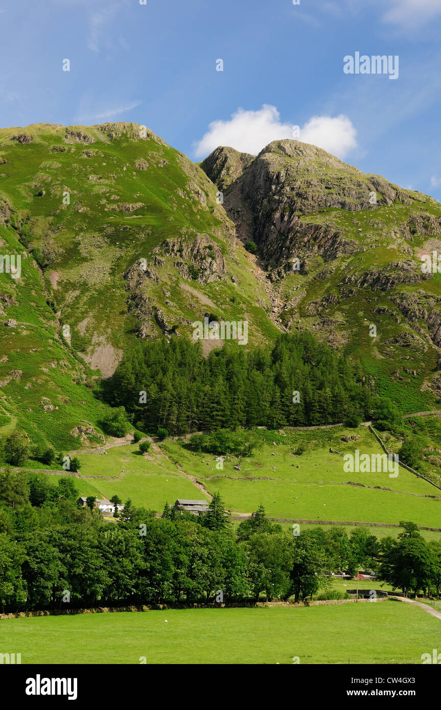 Whitegill Crag, Scout Crag and Swine Knott in the Great Langdale Valley in summer in the English Lake District - Stock Image