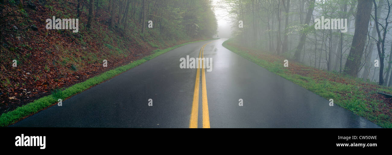 Rain on Foothill Parkway, Great Smokey National Park, Tennessee - Stock Image