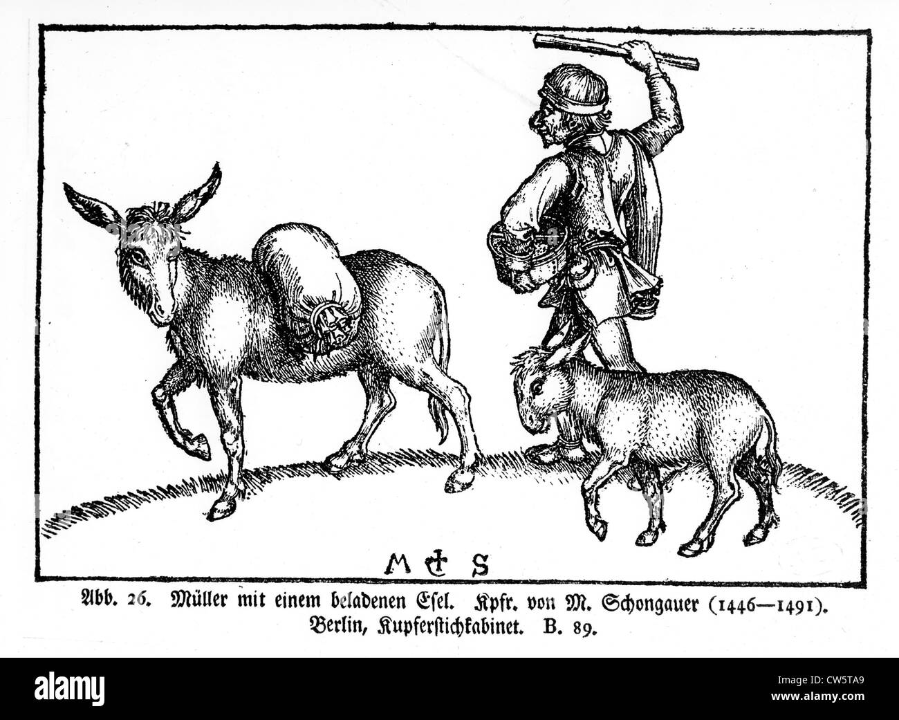 Wood engraving, Peasant with his mule and his donkey - Stock Image