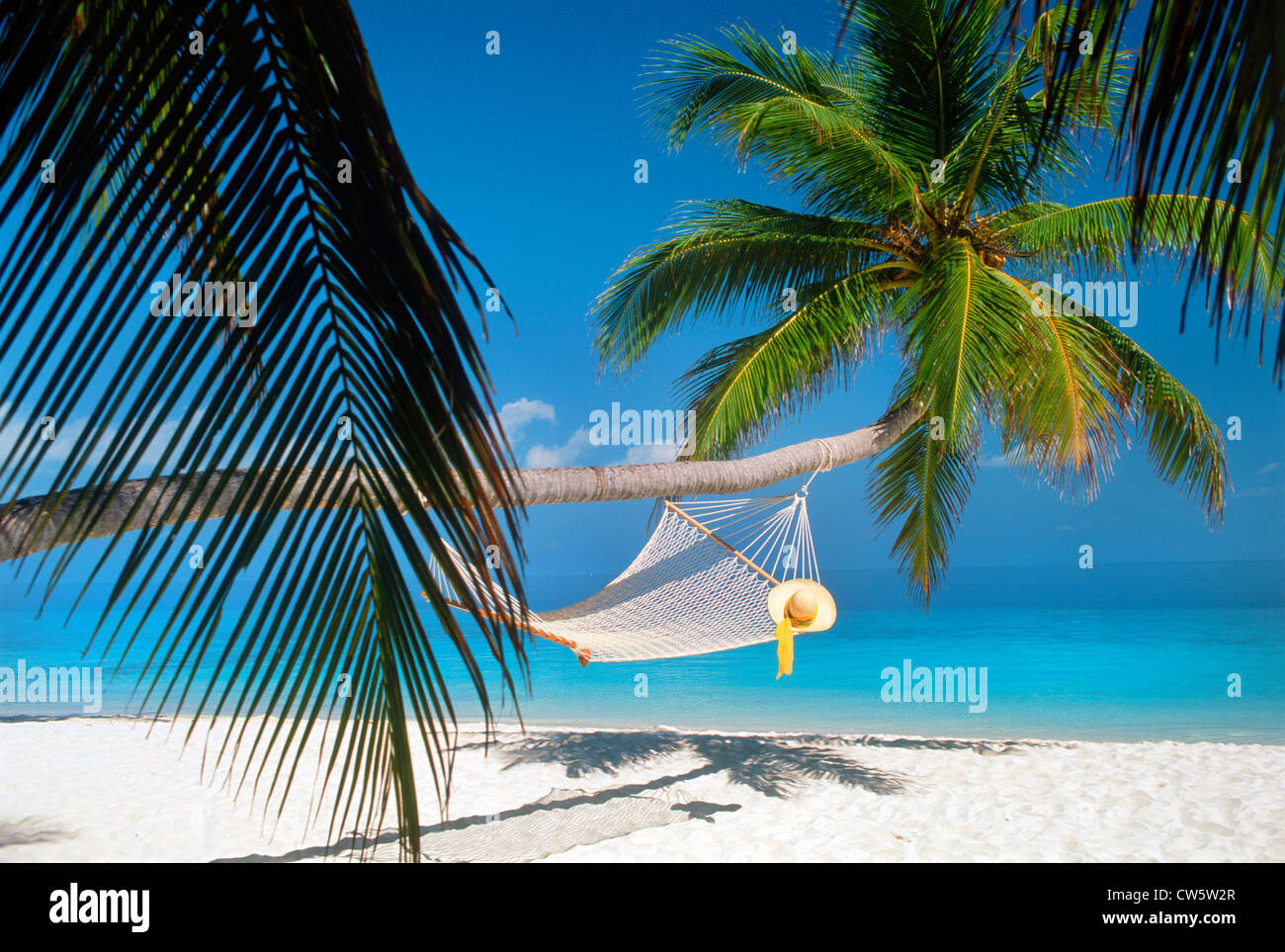 Hat resting on empty hammock strung under long palm tree trunk over white sandy shores representing tropical holidays - Stock Image