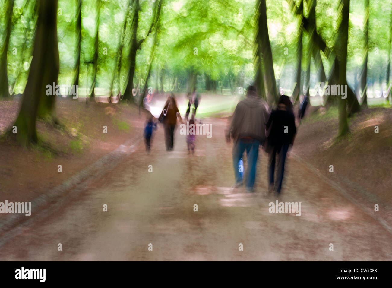 A Sunday walk in the woods and park, Brussels, Belgium - Stock Image