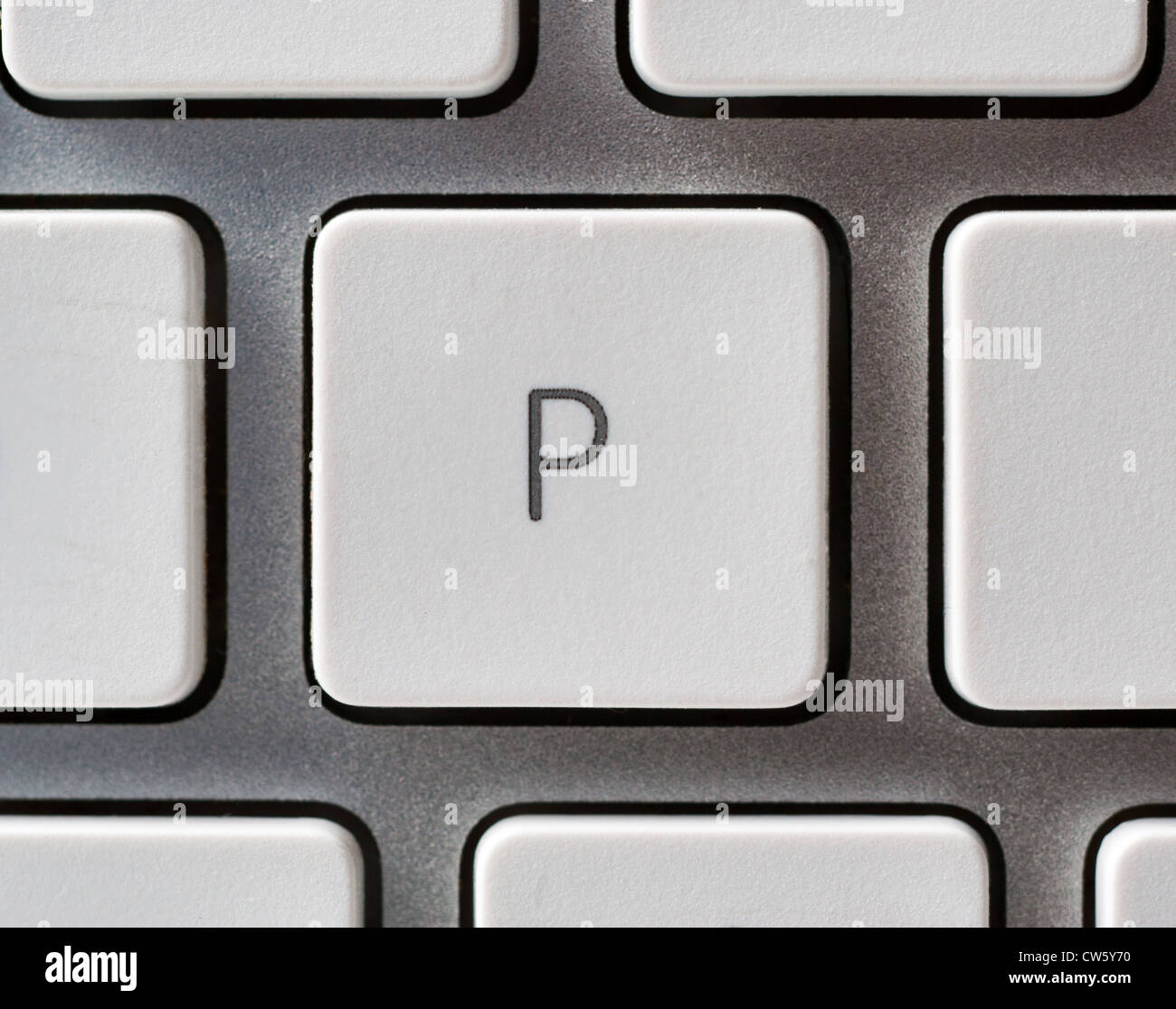 Letter P on an Apple keyboard - Stock Image