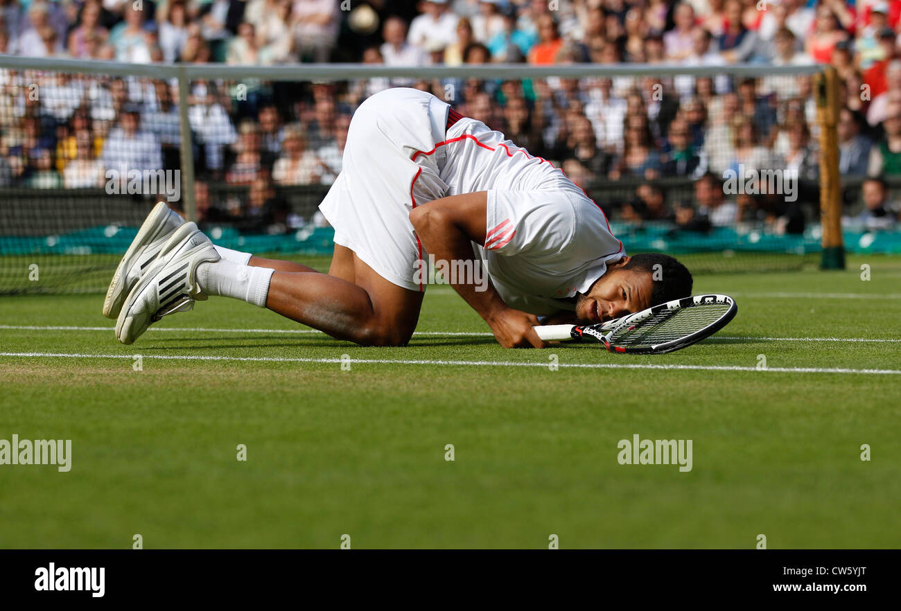 Jo-Wilfried Tsonga (FRA) crashes to the ground at Wimbledon - Stock Image