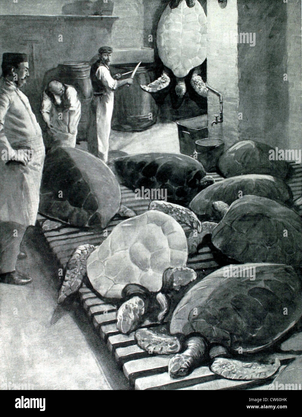 Preparations for the banquet given by the Lord Mayor of London in honor of the new Prince of Wales (1901) - Stock Image