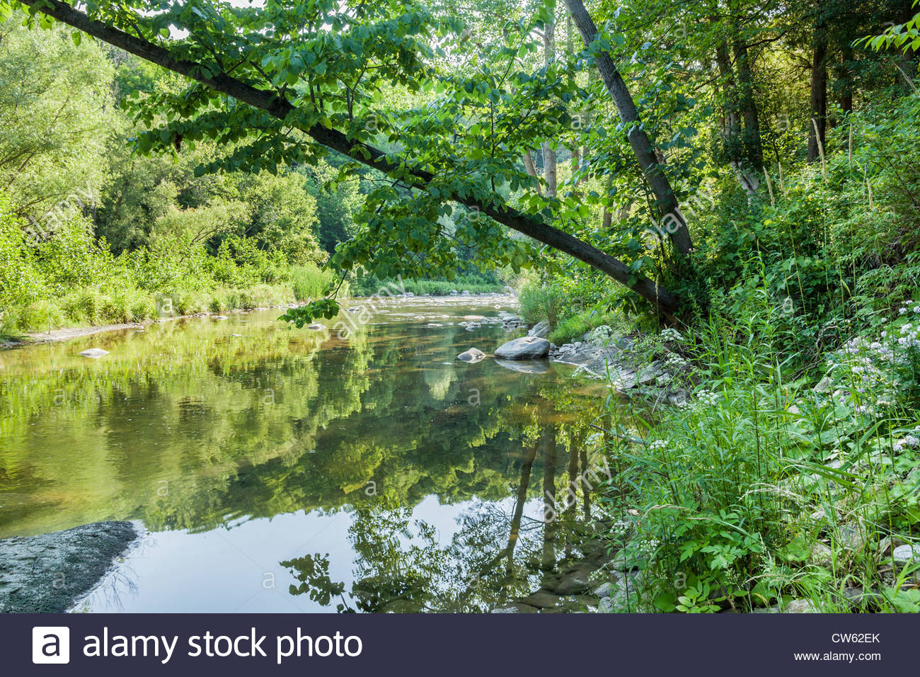 The Rouge River in summer in Rouge National Urban Park an urban wilderness in Toronto Ontario Canada. - Stock Image