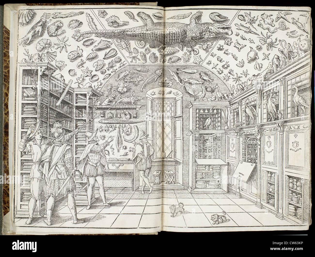 Imperato, Ferrante in his cabinet of curiosities - Stock Image