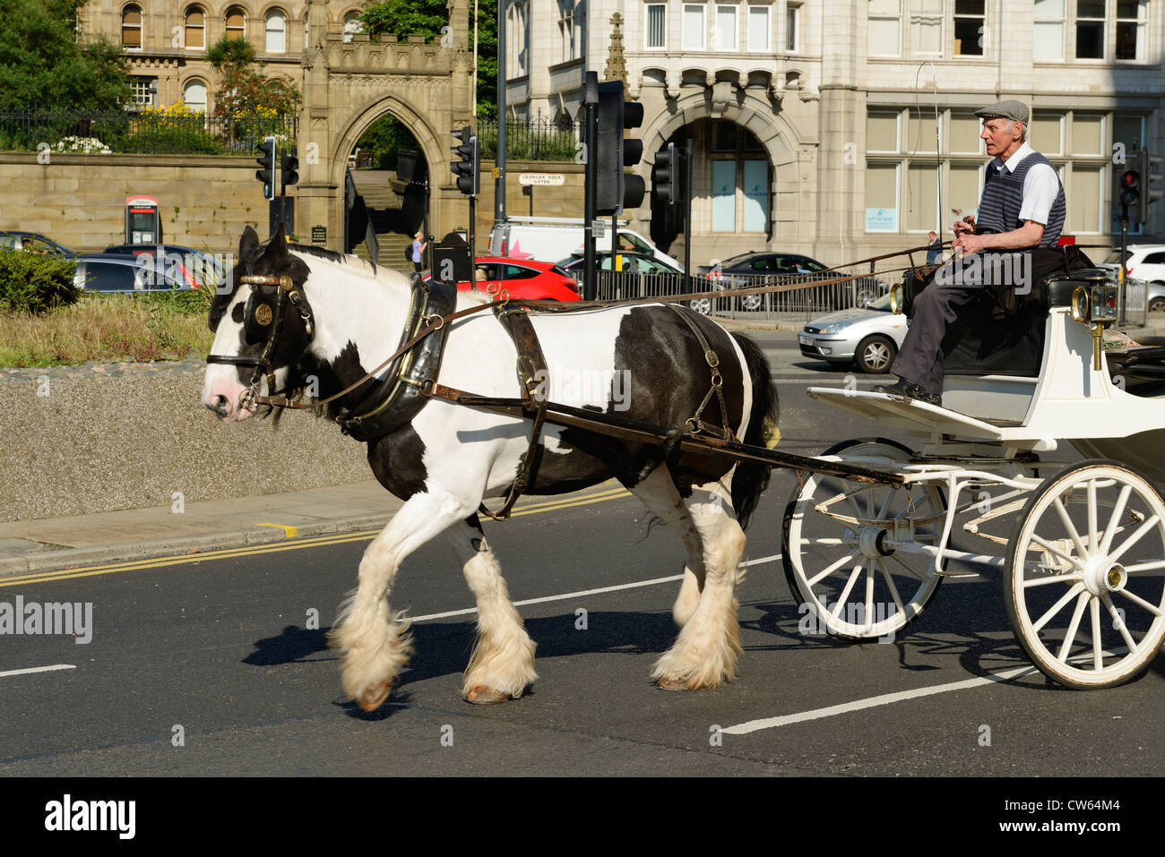Horse and trap on The Strand in Liverpool city centre - Stock Image