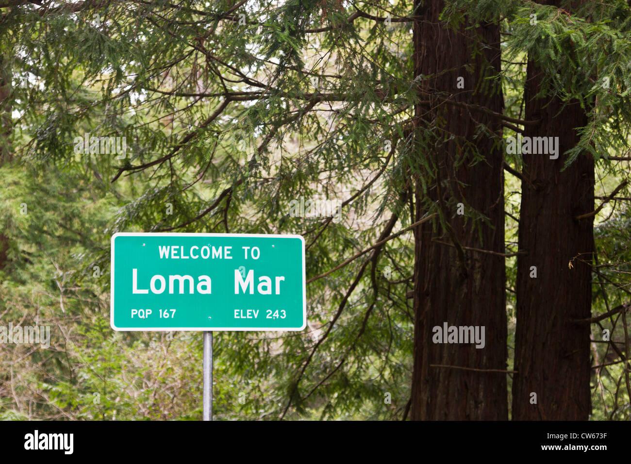 Loma Mar redwoods in the Santa Cruz Mountains - Stock Image