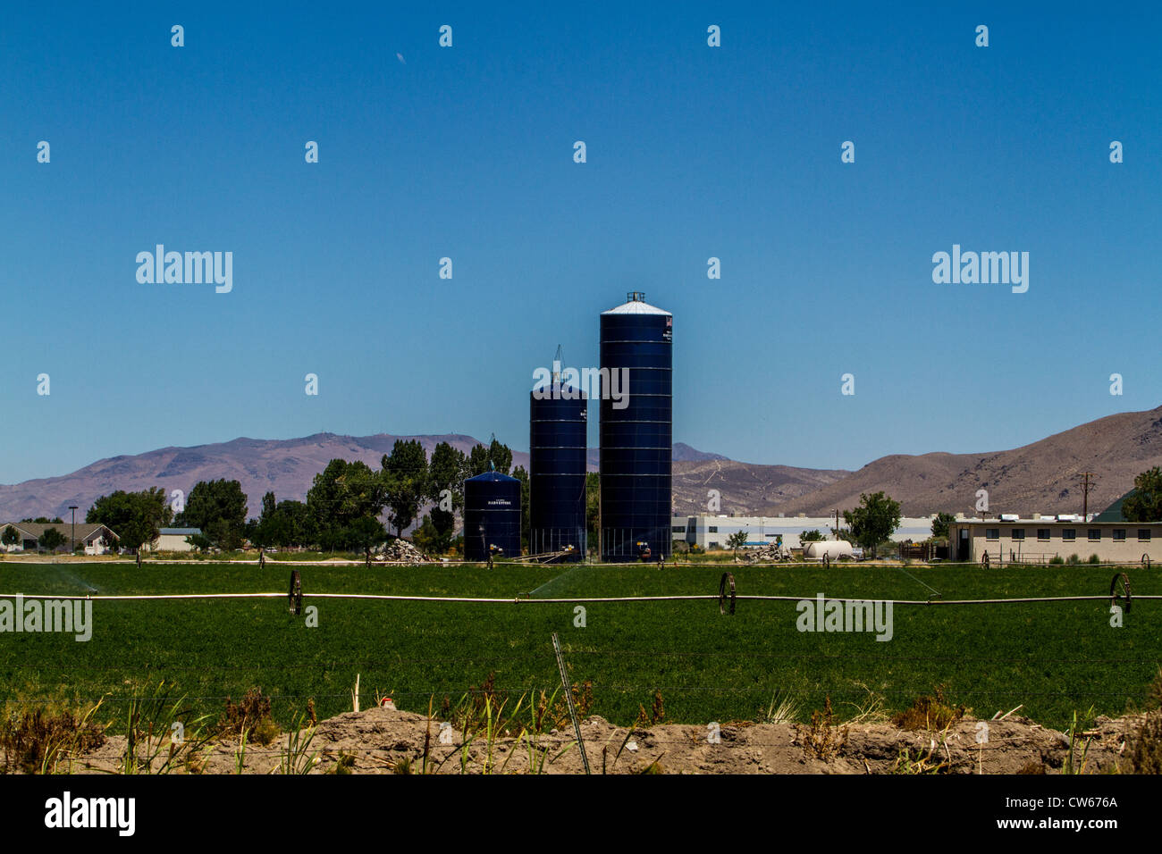 Ao Smith Harvestore silos and an alfalfa field being irrigated with a wheel line in Minden Nevada - Stock Image