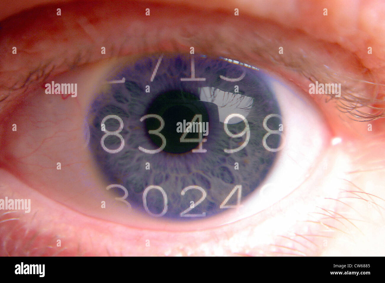 stored data in a eye - Stock Image