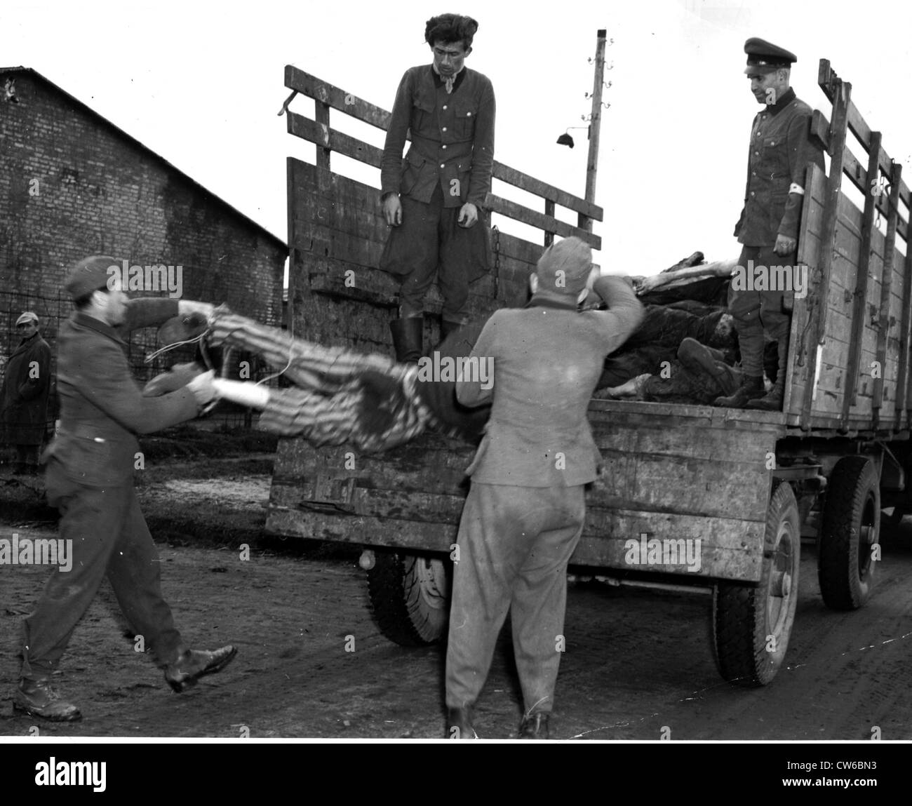 German S.S. troopers load victims of Nazis for burial at Belsen camp (Germany) April 28,1945 Stock Photo