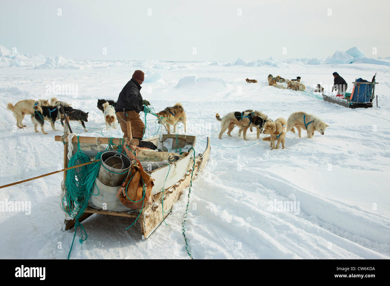 two Inuit hunters with dogsleds at Cape Tobin, Greenland, Ostgroenland, Tunu, Ittoqqortoormiit - Stock Image