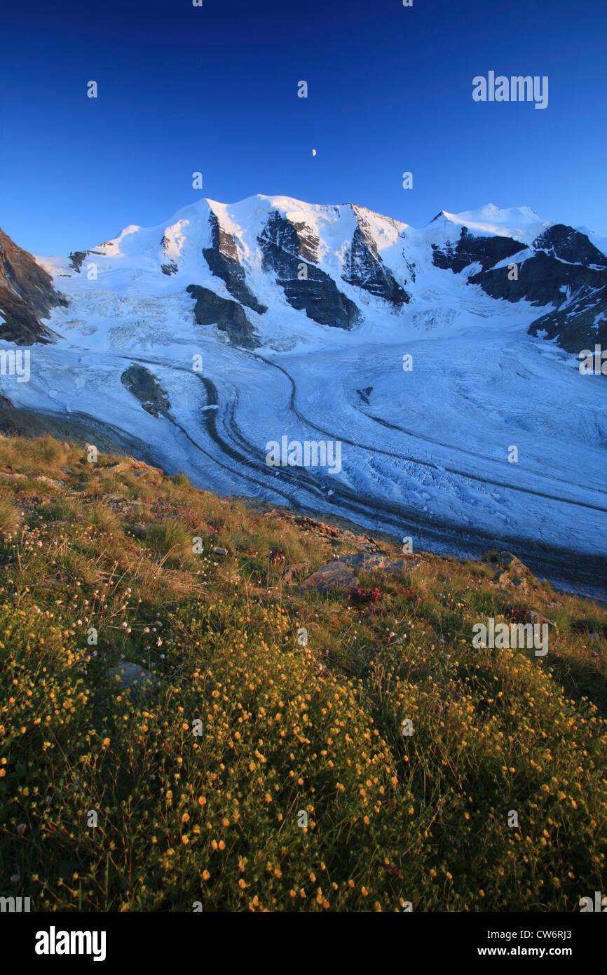 view from Diavolezza on Piz Palue, Bellavista, Piz Bernina, Pers Glacier (Vadret Pers), Switzerland, Graubuenden, Stock Photo