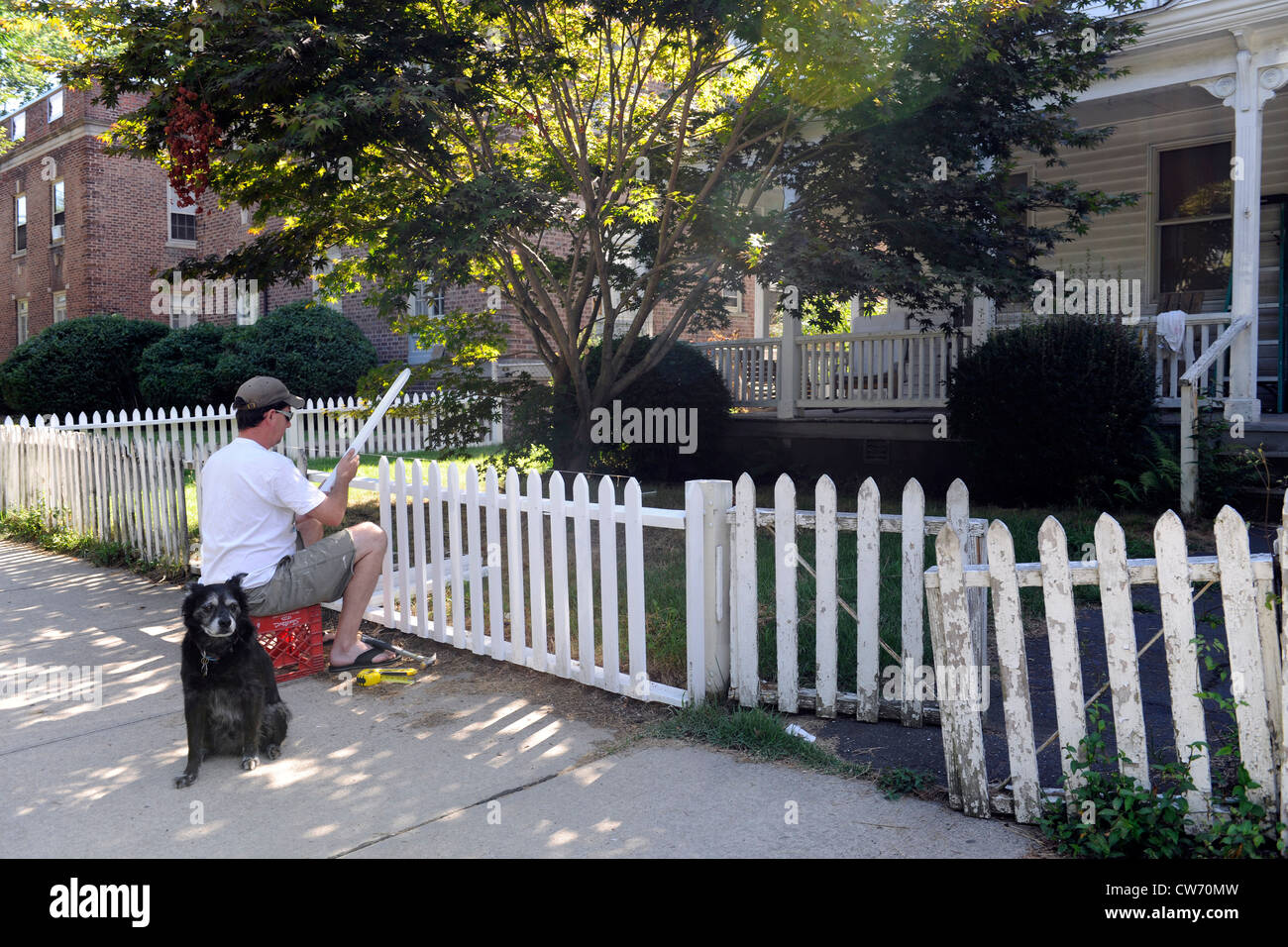Homeowner rebuilding his fence on Orange Street in East Rock neighborhood, New Haven, CT. - Stock Image