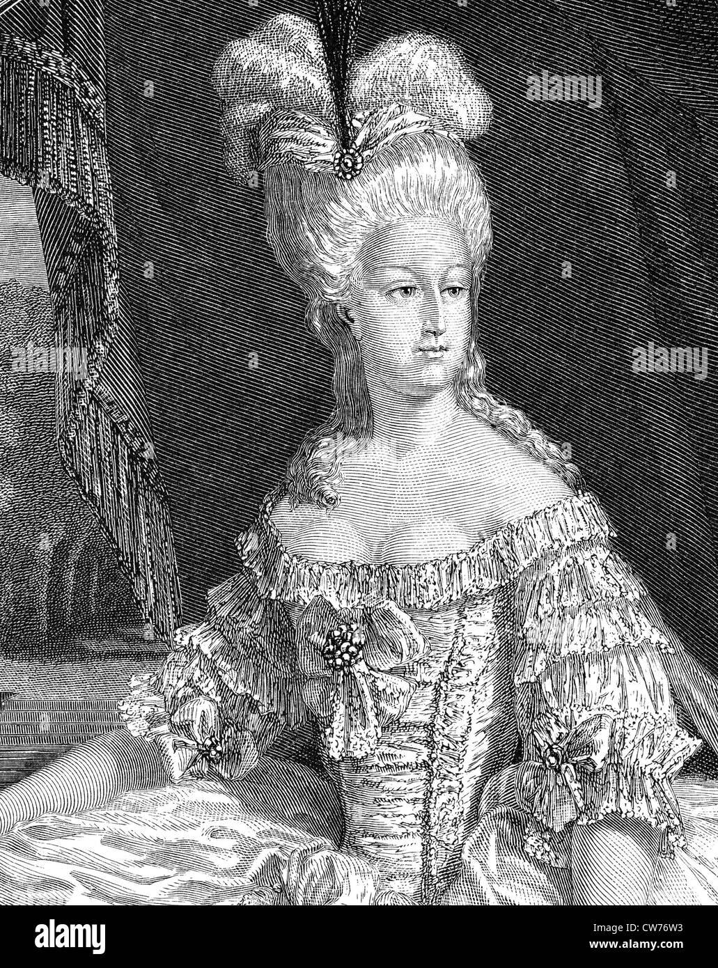 Queen Marie - Antoinette - Stock Image