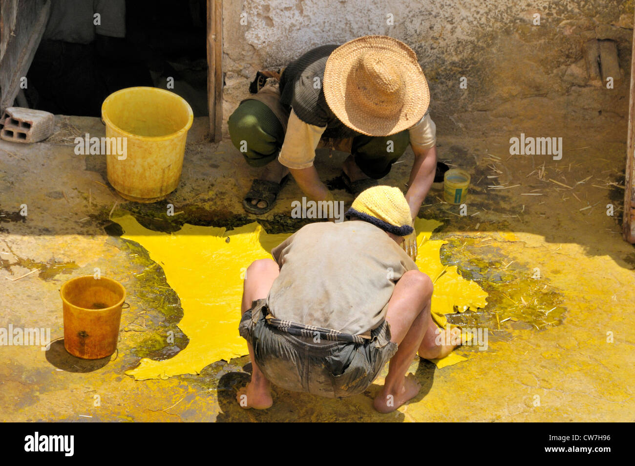 two worker drying dyed animal skin at tannery chouwara, Morocco, Fes - Stock Image