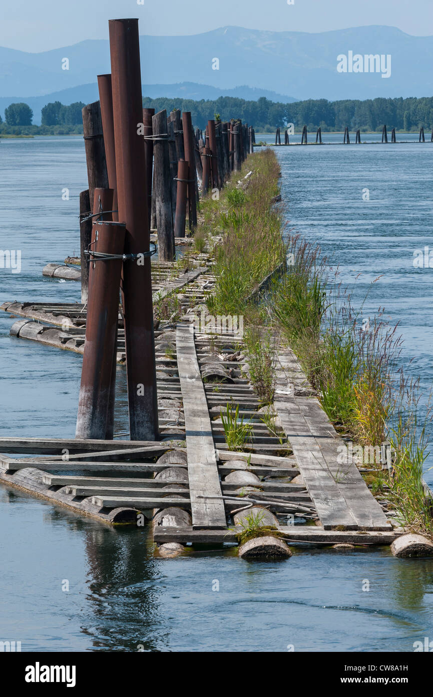 Floating pier along the Clark Fork river in northern Idaho. - Stock Image