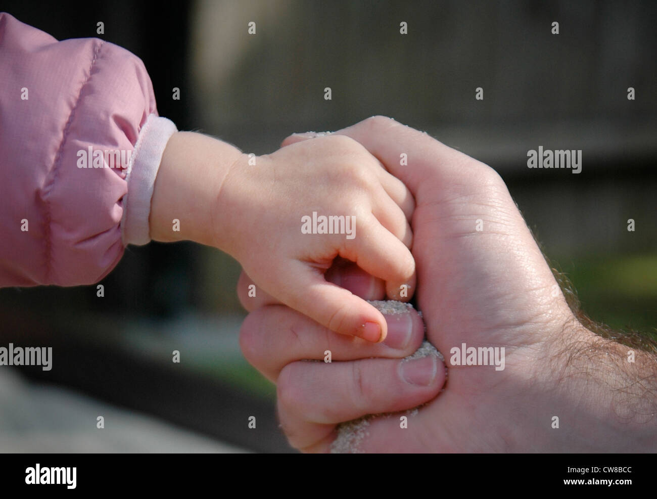 Father & Child Gripping Hands Stock Photo