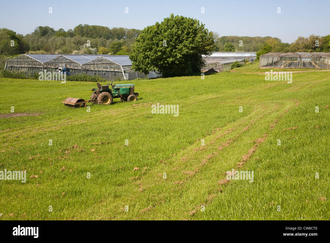 Old tractor and glasshouses of market garden Newbourne Suffolk England - Stock Image
