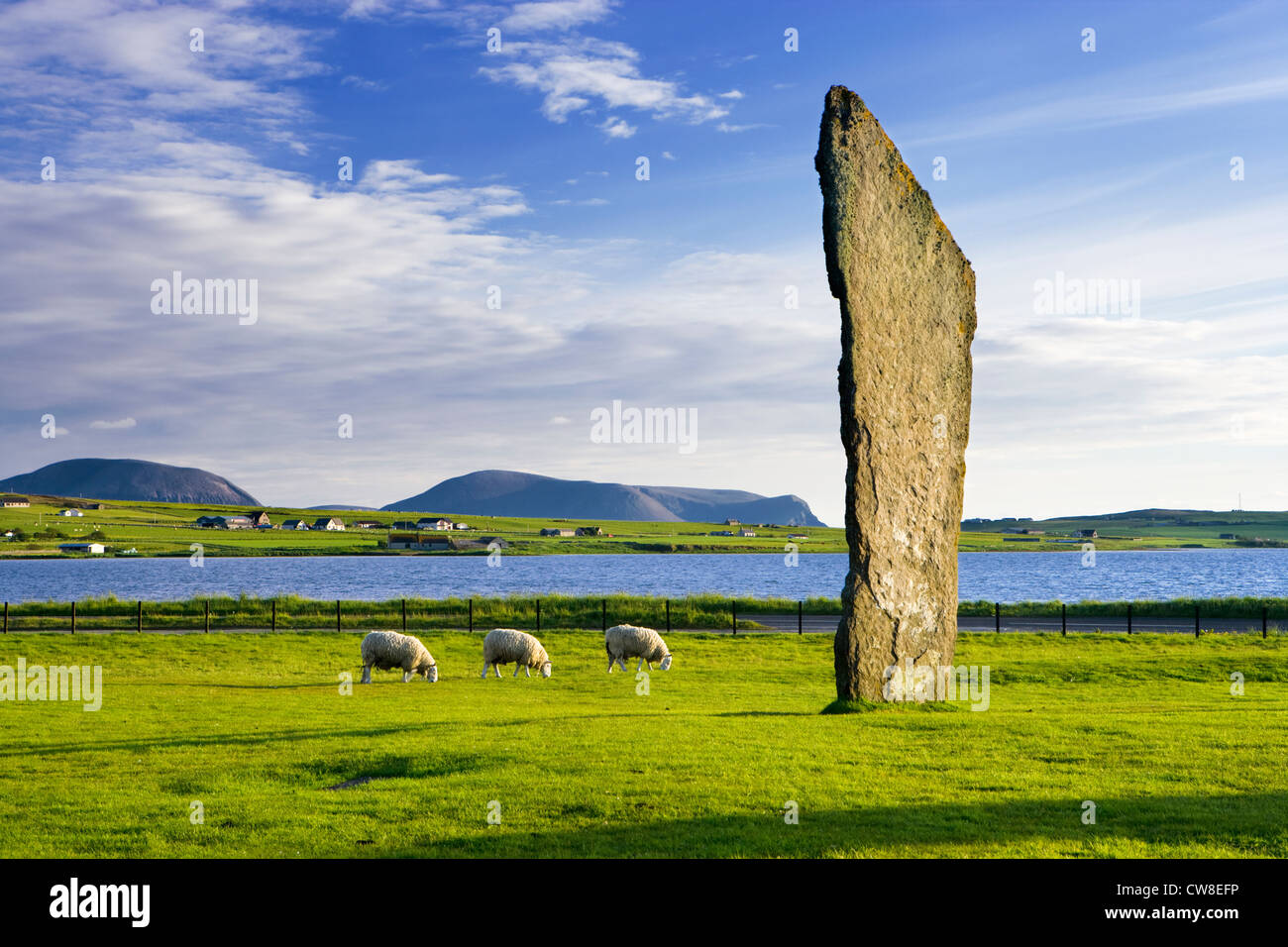 Stones of Stenness, Orkney, Scotland, UK. - Stock Image