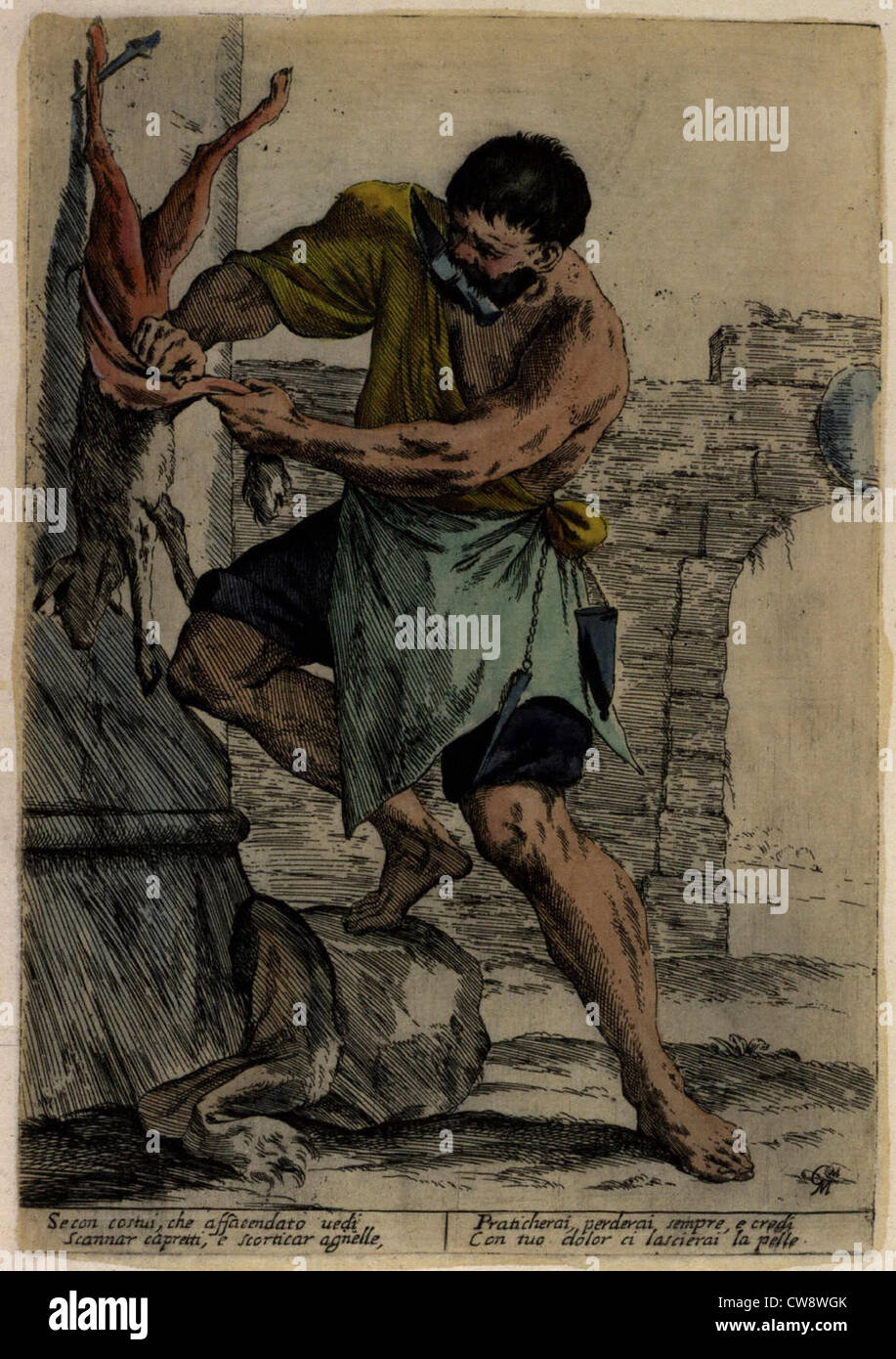 Street trades in Bologna in 17th century man removing animal skin - Stock Image