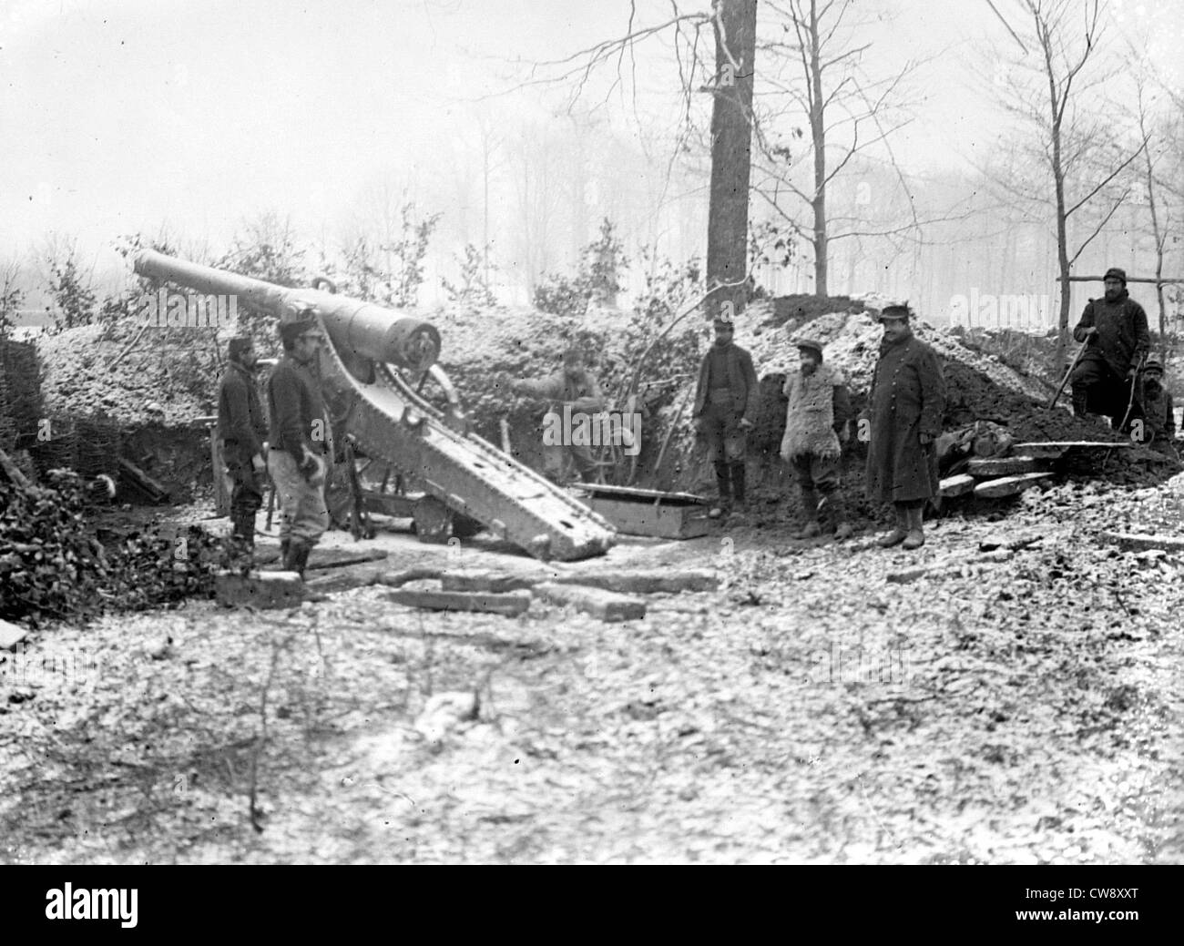 120 long cannon in the forest of Argonne - Stock Image