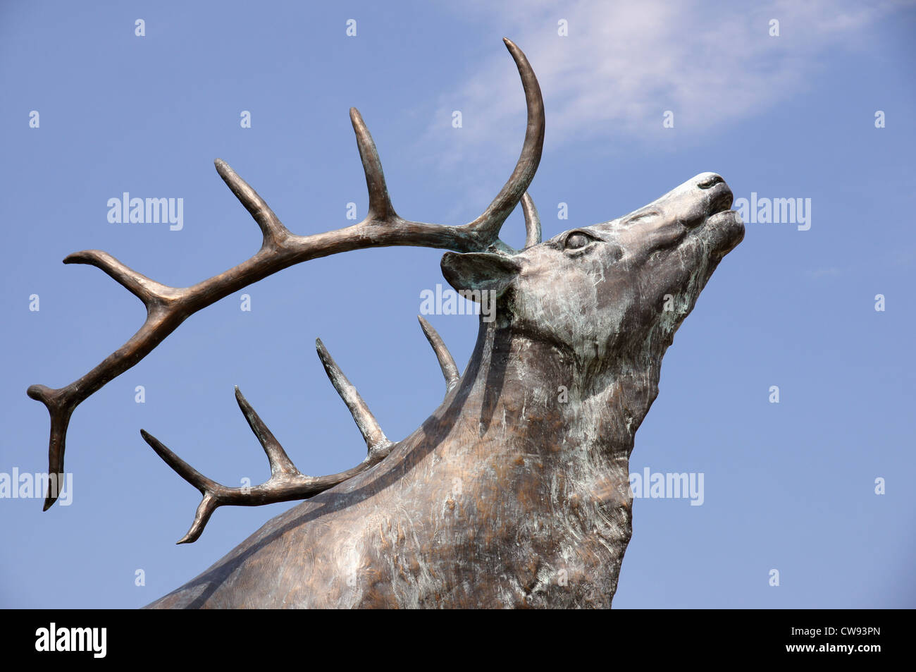 bull elk statue washington main street st city oklahoma ok route 66 historic attraction landmark art aptitude - Stock Image