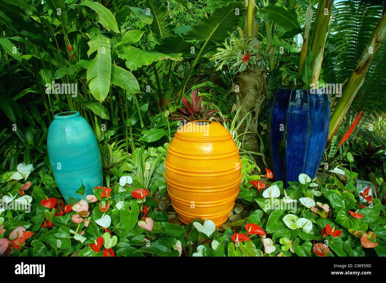 plants pottery myriad botanical garden oklahoma city ok crystal bridge interior reno robinson streets street - Stock Image