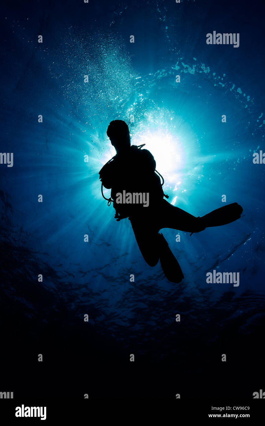 Silhouette of a scuba diver with the sun behind them - Stock Image