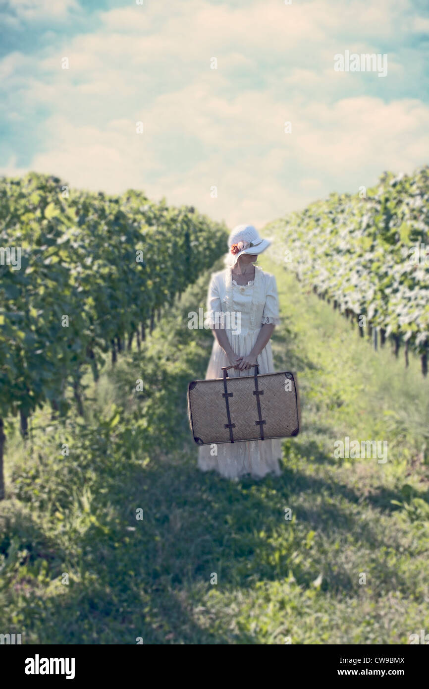 a woman in a white, Victorian dress in walking between vineyards - Stock Image